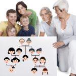 Genealogie (familiekunde)